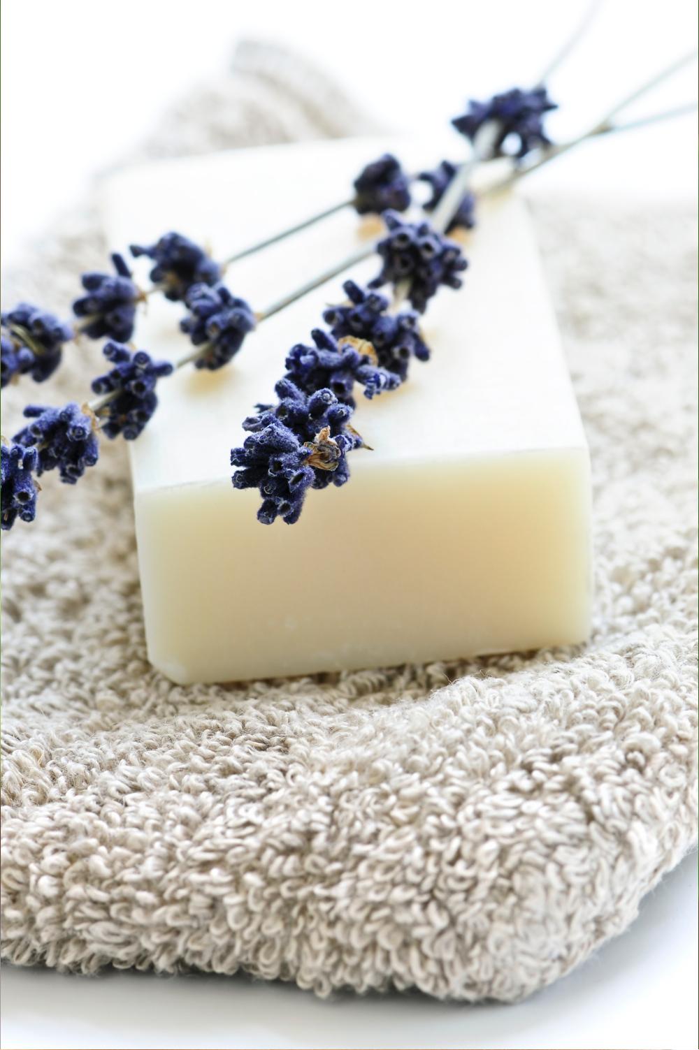 lavender_shea_cleanser